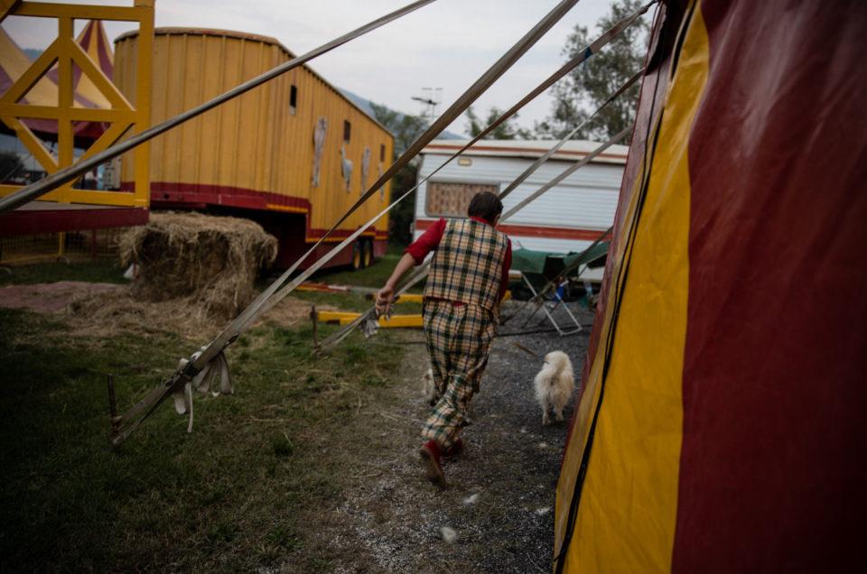 Una giornata al circo